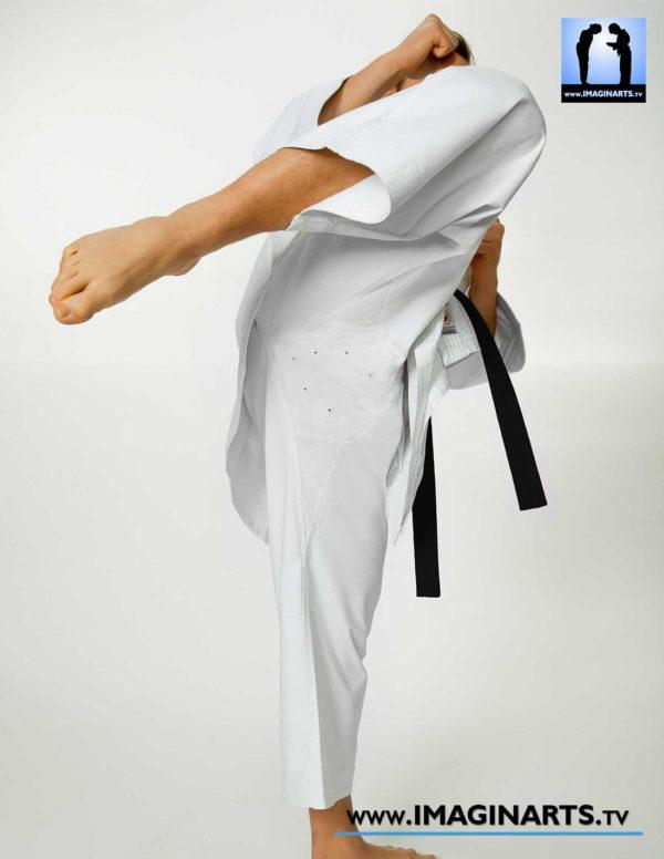 Karate Gi Seishin - kimono karaté haut de gamme