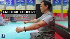 Sonmudo Frédéric Foubert - Interview
