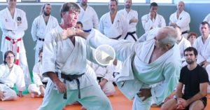 Jean-Pierre Lavorato - Karate Shotokan masterclass 2019
