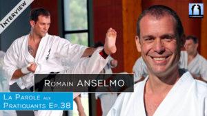 Romain Anselmo karaté wkf kyokushin taikiken